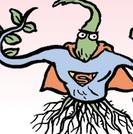 cliquez pour voir ce qui se passe quand un dessinateur de BD croit la propagande anti-OGM