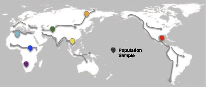 Dispersion de Homo sapiens ces dernières 50'000 ans. Points colorés : échantillons utilisés dans l'article que dont il est question plus bas.